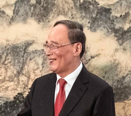 '판빙빙 스캔들' 휩싸인 왕치산, 시진핑 이은 中 서열 2위
