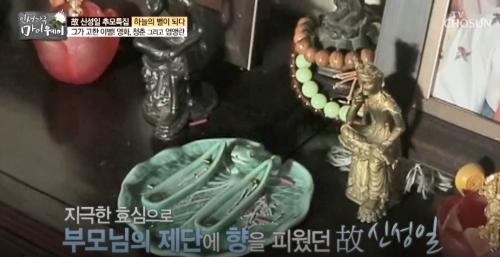 """효심이 부른 폐암일까…故신성일 """"생전 폐암 원인 발언 재조명"""""""