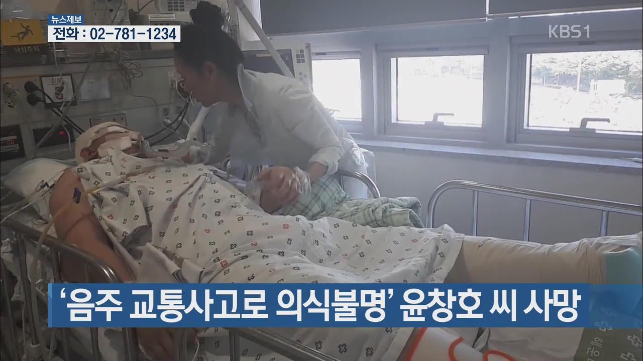 '음주 교통사고로 의식 불명' 윤창호씨 사망 외