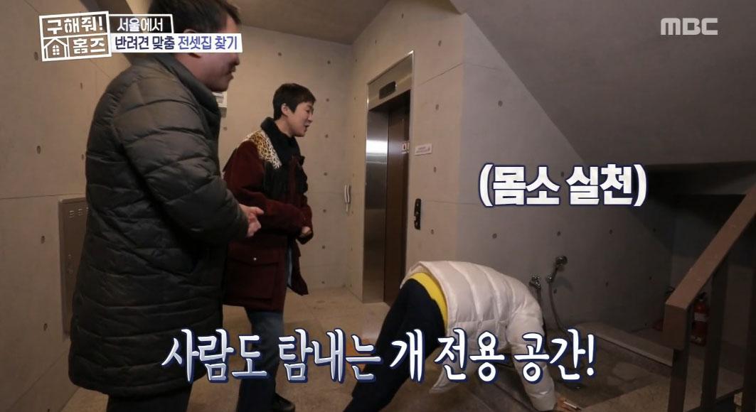 """'구해줘! 홈즈' """"감동이야"""" 김숙-홍진경, 반려동물 위한 세심한 퍼즐하우스에 '감탄'"""