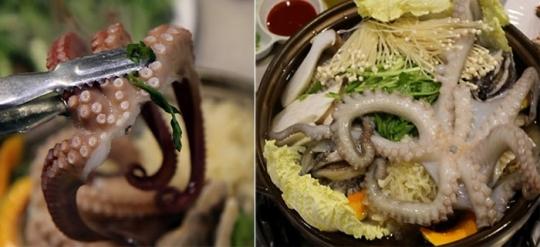 '생방송 투데이' 오늘방송맛집- #맛스타그램, 해신탕 맛집 '풍년옥'…위치는?