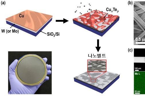 금속 액체방울로 새로운 나노물질 개발 #신소재