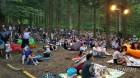 강원권: 한그루 두그루 심은 대관령 황무지…평화의 음악숲 변신