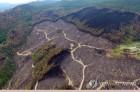 재난성 대형산불 막는다…동해안산불방지센터 10월 개소