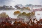 """""""가을의 끝자락""""…진안군 주천면 용담호 생태공원 절경"""