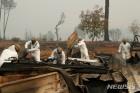 캘리포니아 산불로 66명 사망