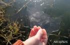 올 겨울 영산강 첫 결빙…지난해보다 3일 빨라