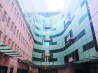 남녀 임금격차 폭로한 '페이 미투' 바람 불었던 영국
