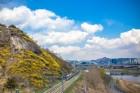교통체증, 주차 걱정없이 봄꽃 볼 수 있는 곳 10선