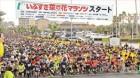 '유채꽃 마라톤대회' 연 日 이부스키市, 스포츠관광 꽃 피우다