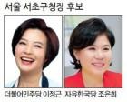 강남 3구 '한국당' 독식…이번에도 떼논 구청장?