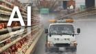 농식품부, 오는 21∼22일 전국 축산시설 일제 소독·점검