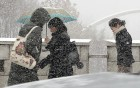 오락가락 기상청 예보…'그래서 눈이 오는 거야?'