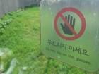 """""""동물원 순기능 많아"""" vs """"동물권 침해""""…뽀롱이가 우리에게 남긴 논쟁들"""
