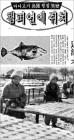 40년 전 등장한 '쥐포 구이'… LA올림픽 땐 '뱀고기 오인 소동'도