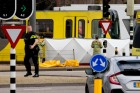 """네덜란드서 총격 사건 3명 사망…""""용의자는 37세 터키 남성"""""""