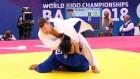 유도 단일팀, 독일 꺾고 '값진 동메달'…한반도기 게양