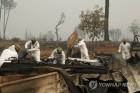 美 캘리포니아 산불 사망자 56명으로 늘어…실종자는 100여명