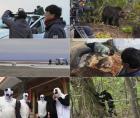 다큐 '곰', 2년의 제작과정 및 미공개 영상 공개