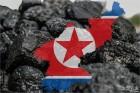 """대구지검 """"북한산 석탄 위장 반입 사건 철저히 수사"""""""