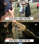 '생방송 오늘 저녁' 꽃길만 걸어요, 평창 스키점프 전망대-백룡동굴-메밀꽃&메밀국수