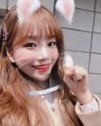 """""""이런 고양이 어디 없나"""" 아이즈원 조유리, 심쿵 미모"""