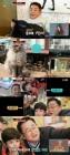 '나이거참' 이홍렬, 허참-서레프 유튜브 조언자로 등장…펫튜브 합방(종합)