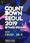 카운트다운파티 '카운트다운서울 2019 엣 타임스퀘어'
