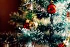 크리스마스에 식당 예약 못한다…'노쇼' 공포에 손 내젓는 사장들(종합)