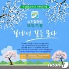 '평화 봄바람 염원하며'…23일 속초갈래길 첫걸음