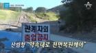 함성 사라진 평창…보존 vs 복원 '옥신각신'