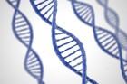 유전자분석·3D바이오프린팅.. '맞춤형 의학' 시대