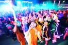 8개국 주한대사 일행, 안동국제탈춤페스티벌 참석