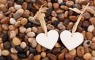 사랑은 가슴으로 할까, 머리로 할까?