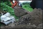 암매장 동물 사체 발견