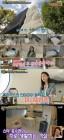 """'서울메이트2' 홍수현, 방송 최초 '집' 공개…""""미니멀리즘 콘셉트, 아무것도 없어"""""""