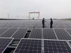 """(르포)군산 유수지 22만m² 뒤덮은 태양광 패널…""""단일용량 세계 1위"""""""