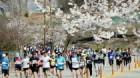 '환상의 봄길 레이스' 제16회 춘천호반마라톤대회