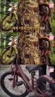 '서프라이즈' 자전거 삼긴 나무, 보고도 안 믿긴 자연의 신비