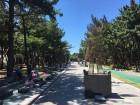 포항시, 녹색도시 공모 '산림청장상' 수상