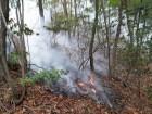 잇단 수리산 화재… 방화 가능성 무게