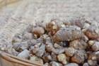 홍지민의 30kg 감량 비법 '핑거루트', 효능과 먹는 방법 및 부작용은?