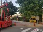 초등생 태운 버스 추돌 사고 뒤 도랑 추락… 16명 경상