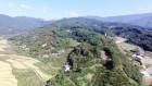 광양시, 세계 최고 수준의 백계산 동백림 조성