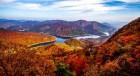 담양군, 추월산을 가을꽃 가득한 휴식과 치유의 공간 조성