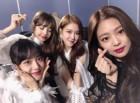 """블랙핑크 """"걸그룹 2019년 1월 브랜드평판 1위...트와이스·레드벨벳·아이즈원·마마무 順"""