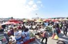 파주 장단콩축제·양평 몽땅구이축제·방어축제 등 11월 가볼만한곳·먹거리축제