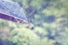 청주천안수원날씨 흐림, 경주날씨 '눈보라'에 양산날씨는 비소식 전해져…우산 필수