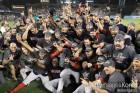 '뜨거웠던' MLB 월드시리즈, 시청률도 대박…평균시청률 3.34%