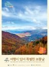 가을여행주간 경북에서 만나는 특별한 가을